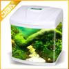 chinese beautiful small glass aquarium