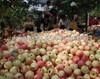 Bulk apples whole sale