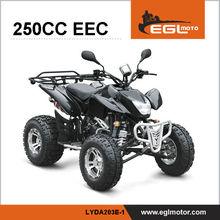 EEC petrol quad bike cheap 250cc beach motorcycle
