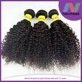 goldwell couleur remy extensions de bande de cheveux brésiliens livraison gratuite