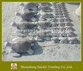 tortuga de piedra talla