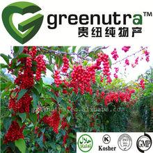 top quality schisandra extract