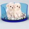 acrylic dog kennel, acrylic cat kennel