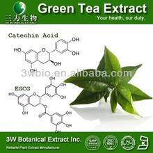 Halal&Kosher Green Tea P.E. 95% Chinese Green Tea powder Green Tea powder Extract