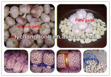 2014 Japanese Garlic For Sale