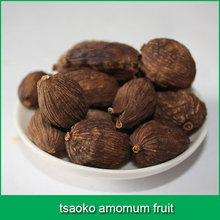 tsaoko amomum fruit