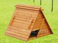 بيوت الدواجن منزلكبيرة البناء صنع صيني dfc024 بيوت الدجاج