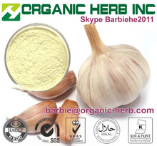 high quality dehydrated garlic powder