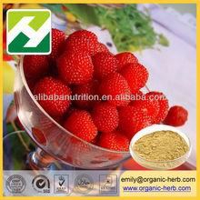 Raspberry extract Fructus Rubi P.E.