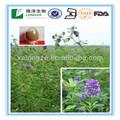 100% estratto vegetale naturale medicago sativa saponine 5% polvere di estratto di erba medica