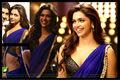 esclusivo indian designer partito usura ultima bollywood saree sari abito da sposa nuovo
