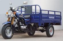 professional EEC gasoline cargo trike