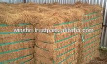 Coconut coir fiber price