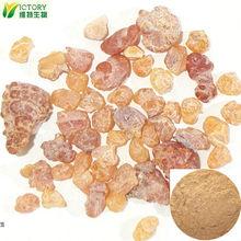 Mastic gum powder frankincense extract herb medicine