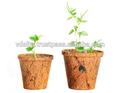 Fiber de coco pot ( jardin pot / pot de fleur )