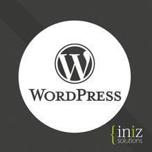 Tours & Travels business website design in wordpress (CMS)