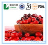 Hot sales Vaunium Macrocarpon extract /Cranberry extract powder/Cranberry p.e./Cranberry fruit extract/Cranberry juice powder