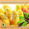100% Natural Extract of African Mango seed Powder (Fresh fruit Powder)
