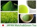 نحن نبحث عن وكالة ماتشا الشاي الأخضر و. الشاي الأخضر آثار جانبية