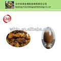 Obliquo inonotus estratto/naturale chaga fungo/polisaccaride