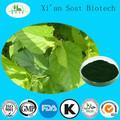 la medicina china orgánica extracto de la planta de clorofila en polvo extracto