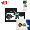 LED flashing greeting card musical inserts