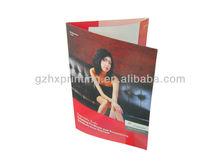 Matt Laminate Tri-Fold Brochure of Furniture