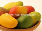 fresh mango from ghana