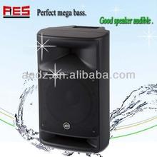 250 watts 2 way Big amplifiered PA Speaker bluetooth speaker with guitar input