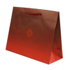 Retail Paper Shopping Bag With Custom Printed