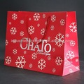 de lujo bolsa de papel comercial