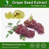 GMP&ISO Pure Grape Seed Extract Powder Grape Seed P.E. OPC Grape Seed Extract