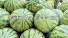 1-MCP improve shelf life and fruit quality