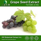 GMP Factory Grape Seed Extract Proanthocyanidin 95 High Quality Grape Seed Extract Powder Grape Seed Extract Supplement
