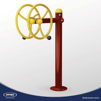 DOUBLE VERTICAL SPINNER- Special Needs Outdoor Gym, park exercise,healthy fitness for disabled people,metal galvanized equipment