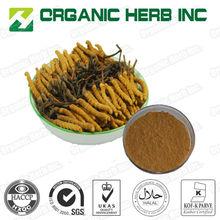 top Natural Cordyceps Sinensis Extract 4:1/Cordyceps powder