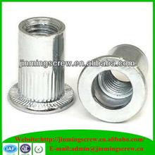 Good quality white zinc plated blind rivet nut