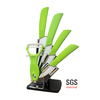 Kitchen knife set with block YJ60G-1
