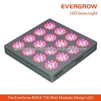 Revolutionary Modular 528W High Intensity full spectrum high lumen led grow light