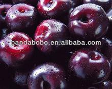 bulk quantity fresh black plums from china
