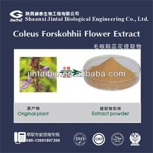 natural 10% 20% 98% forskolin coleus forskohlii extract