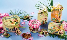 Bigfortune Shabby Chic Tin Bag With Tropical Style