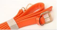 dog collar hardware buckles