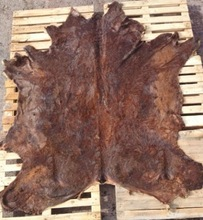 WET SALTED N.IRELAND (UK) OX/HEIFER HIDES (36'S)