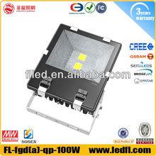 LED Floodlights Outdoor IP65 Flood light COB LED 100W Flood Light