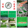 synthetic grass for meeting room (have stock)
