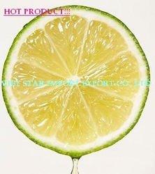 FRESH LIME/ FROZEN LIME BEST PRICE