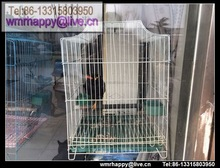 hot sale parrot cage/larger parrot cage/african grey parrot cage