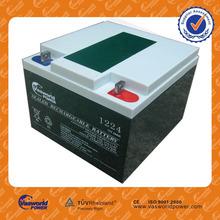 Dry battery for UPS 12v24ah lead acid battery