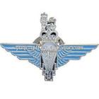 New Arrival Design Custom Metal Pilot Wings Pin Badge
